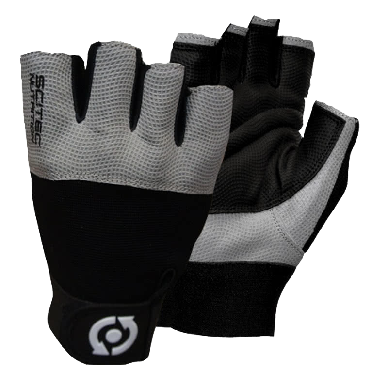 Scitec Nutrition Grey Style gloves pair